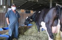 Produtores de leite comemoram preços em alta, mas adotam cautela sobre futuro