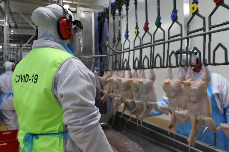 Planta industrial de aves iniciou as atividades em fevereiro, em Arroio do Meio, redobrando atenção com protocolos