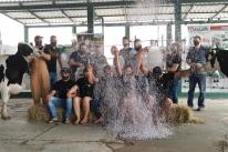 Confete em vez de leite marca festa de vencedores de concurso leiteiro na Expointer