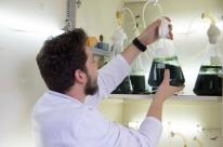 Estudo busca eliminar presença de fármacos presentes na água