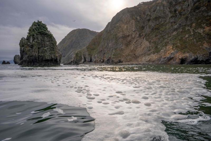 No fim de semana, foram registradas grandes manchas de espuma amarelada e oleosa ao longo do litoral