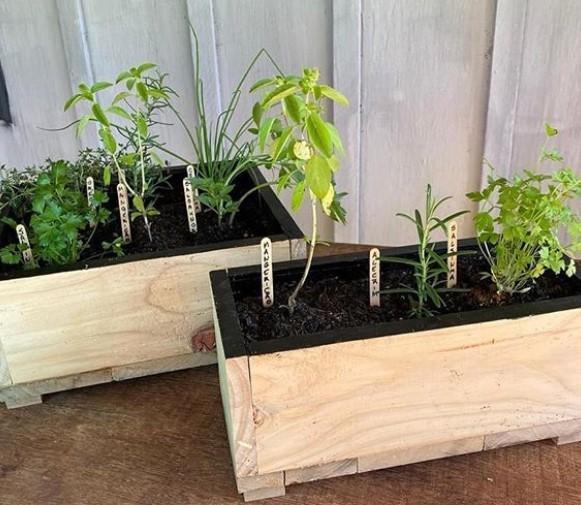 O preço das mini hortas variam de acordo com o tamanho.