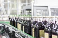 Vinícola da serra gaúcha registra aumento de 87% na exportação de suco de uva