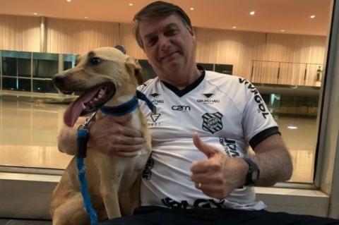 Bolsonaro posta foto ao lado de cão e diz: 'vacina obrigatória só no Faísca'