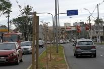 Prefeitura de Porto Alegre deve assumir cuidados com as mais de 1,6 mil mudas de árvores plantadas pela Engemaia