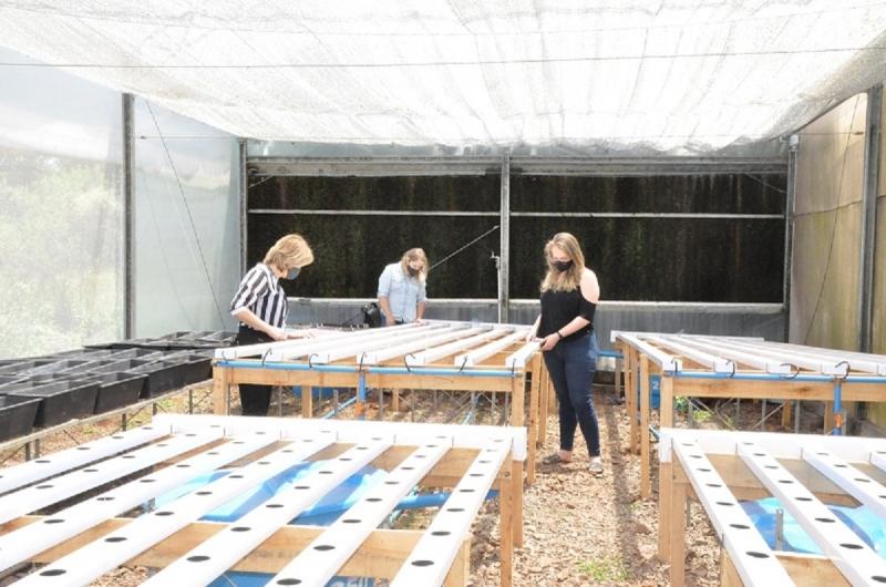 Projeto criado por três mulheres tem o objetivo de buscar inovação na produção e comercialização