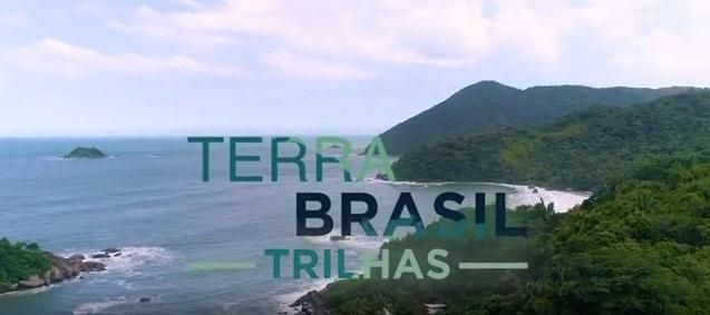 Biólogo e botânico e engenheiro agrônomo viajam por diferentes ecossistemas e biomas brasileiros