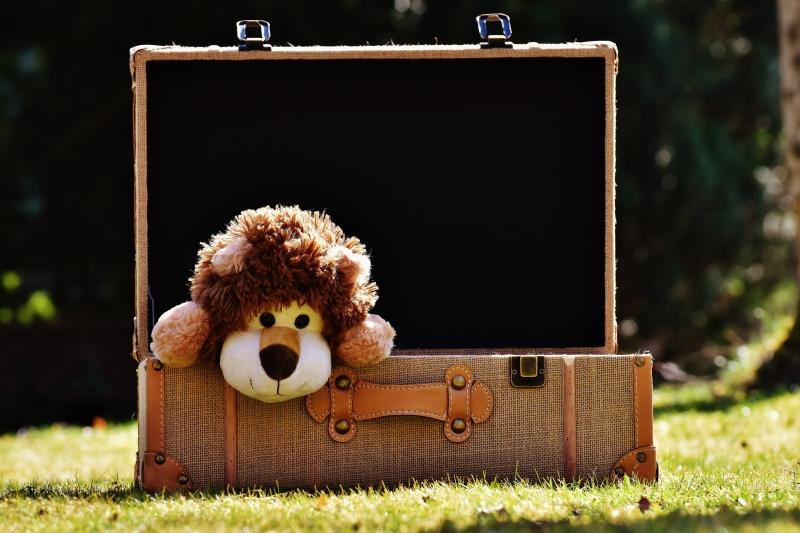 CON - imposto renda doação leão pelúcia - Alexas_Fotos pixabay