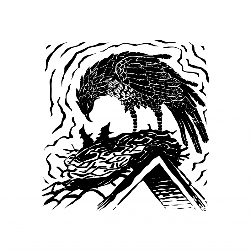 Capa e parte interna do romance 'Timbirupá' têm ilustrações de Beto Soares
