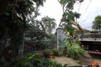 Primeiro temporal do ano deixa estragos em Porto Alegre e em diferentes regiões do RS