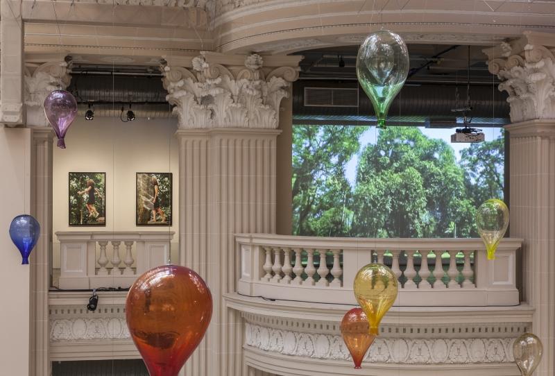 Grande atração no Centro Cultural de POA é a inédita exposição 'Naturezas imersivas'