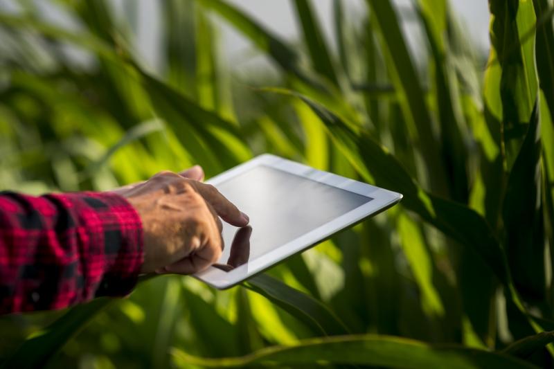 Transformação digital no modelo de negócio potencializa as contratações