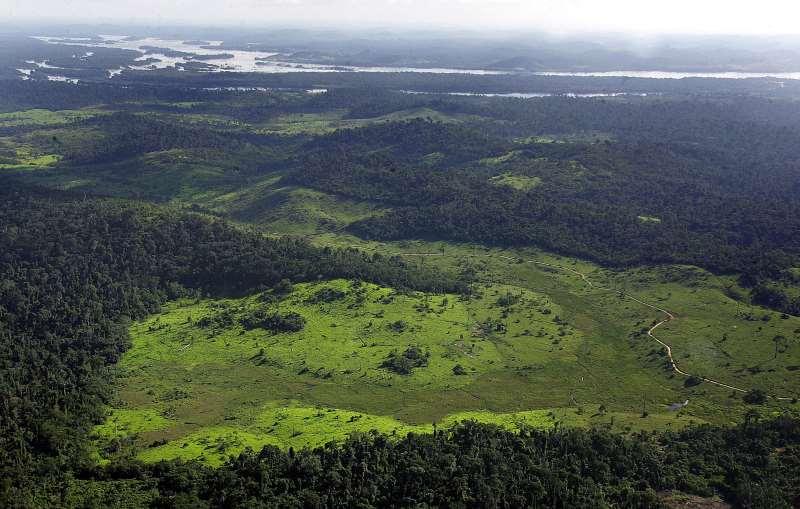 De acordo com a proposta, dos 2,697 milhões de hectares protegidos atualmente, apenas 1,772 milhão seria mantido sob proteção