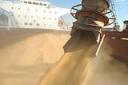 Exportações agrícolas gaúchas caem 20,1%