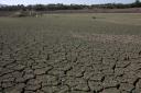 FAO alerta para aumento da degradação dos solos no mundo