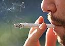 Prefeito de São Paulo sanciona lei que proíbe fumo em parques públicos