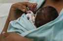 Certidões de nascimento, casamento e óbito terão CPF