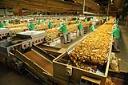 Exportações industriais gaúchas sobem 12,5%