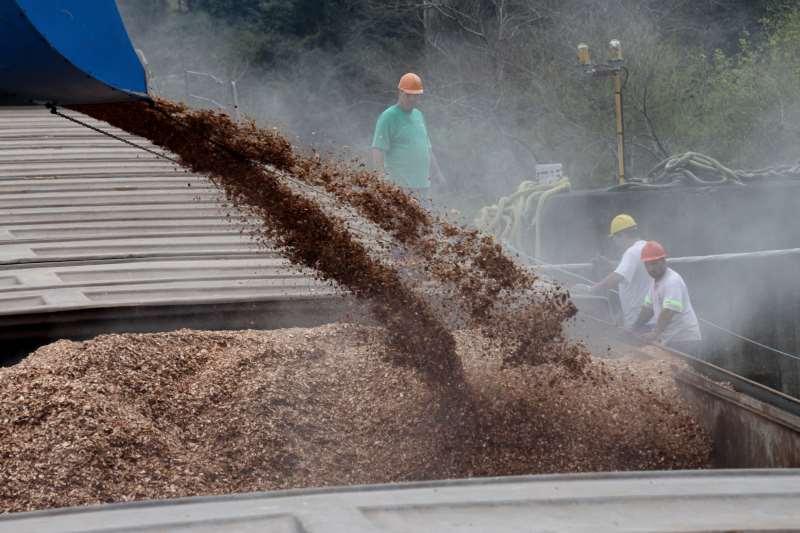 Estrutura utilizará cavaco de madeira como combustível principal