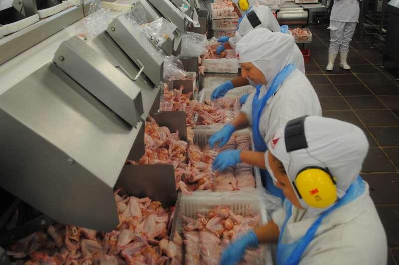 Situação mais crítica foi apresentada na Minuano; dos 305 trabalhadores, 205 tiveram resultado positivo