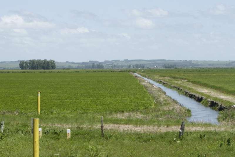 Construção de uma barragem para reter água do Arroio Castelhano é estudada para épocas de estiagem