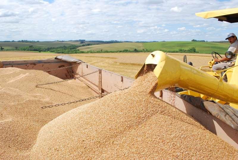 Brasil passou a exportar produtos que antes importava, como o trigo