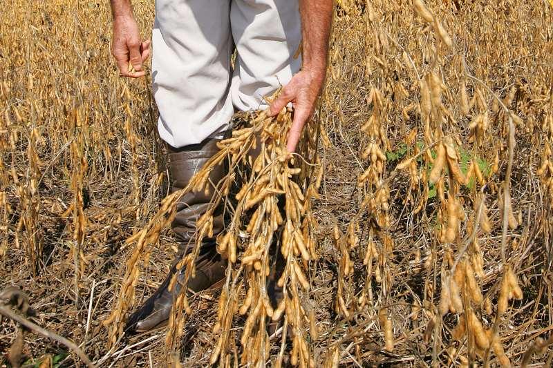 Cadastro reúne informações de atividades econômicas dos produtores