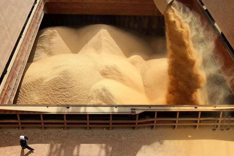 Devido à peste suína africana, chineses reduziram compra de soja