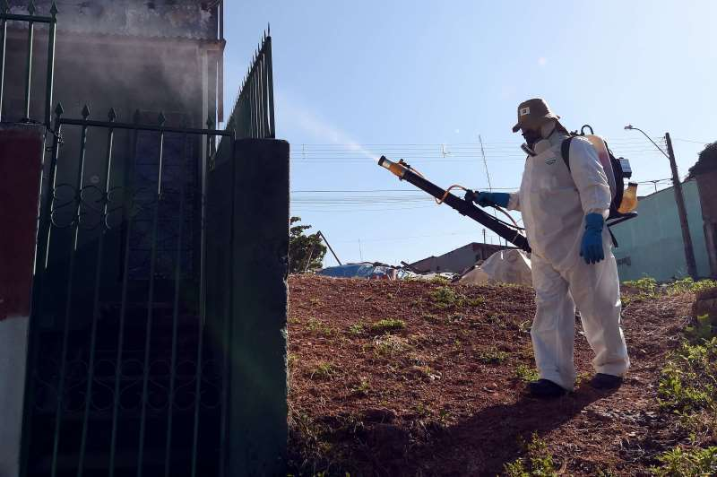 Segundo ministro Ricardo Barros, combate ao mosquito é dever de todos os cidadãos