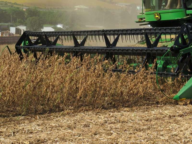 Resultados do agronegócios apresentam um impacto acentuado no Produto Interno Bruto do Estado