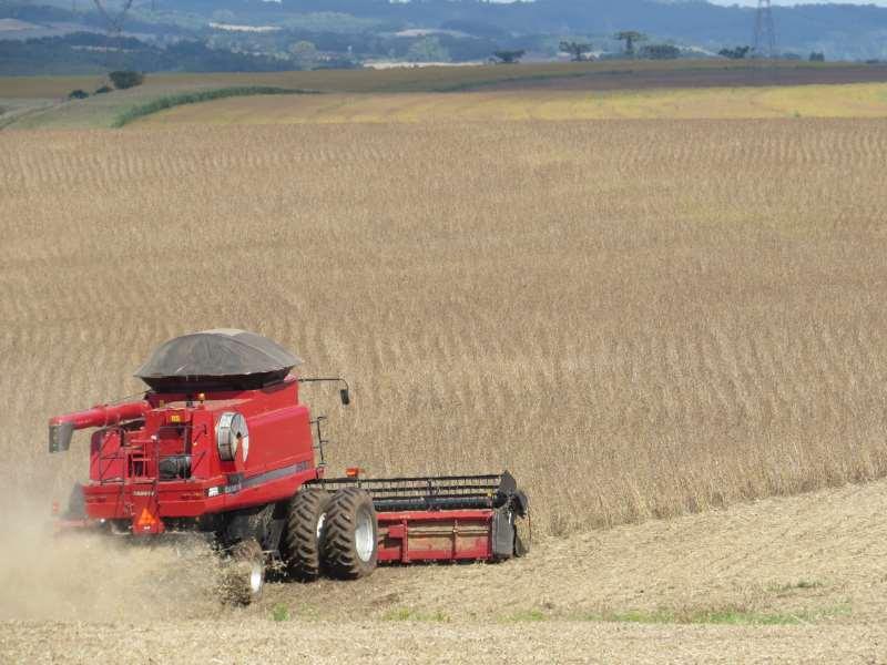 Área total das lavouras brasileiras deverá crescer 1,3%, atingindo 745,6 mil hectares