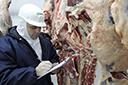 Terceirização de inspeção de abates divide veterinários gaúchos