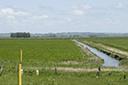 Grupo debate iniciativas para irrigar plantações de arroz