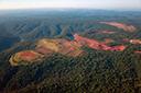 Desmatamento na Amazônia cresce 183% em dezembro em relação ao mesmo mês de 2018
