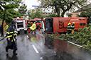 Brasil tem dificuldade para punir motoristas que matam no trânsito