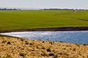 Estado conta com 92% da área do Cadastro Ambiental Rural finalizado