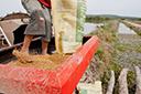 Clima atrasa o plantio das lavouras de arroz