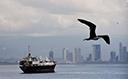 Panamá pode ser hub para empresas gaúchas