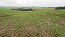 Clima dificulta semeadura das lavouras de inverno