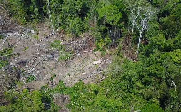 A MNTB atua na evangelização de índios na Amazônia desde os anos 1950